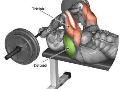 Упражнения – кои мускули натоварвам ?